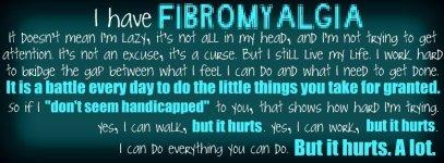 fibro 2