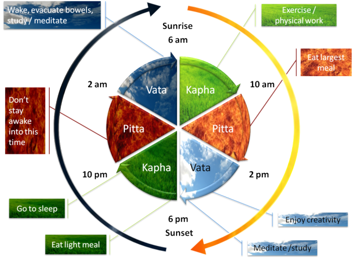 Daily-dosha-timings-and-actions-1024x749
